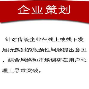 企业策划500元/年