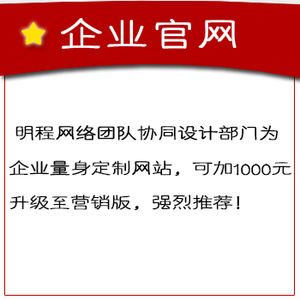 企业官网3500元