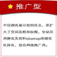 推广型官网4500元